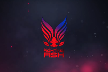 workpoint fighting fish