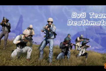 PUBG 8v8 FPS Team Deathmatch