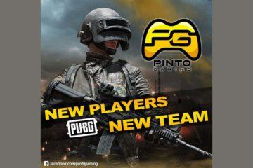 Pinto gaming