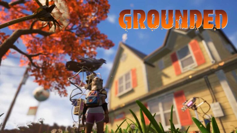 Grounded Roadmap