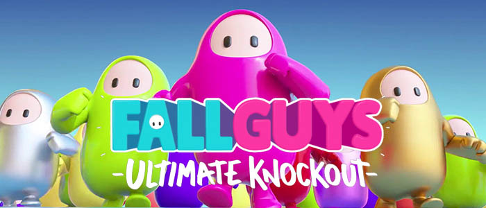 The Game Award, Best Community Support, Fall Guys: Ultimate Knockout